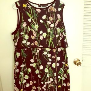 Floral, sleeveless dress, NEW
